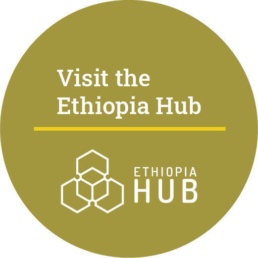 Visit the RSH Ethiopia Hub